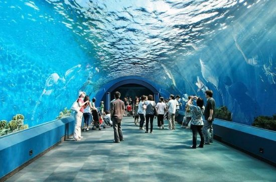 Entrada general al Underwater World...