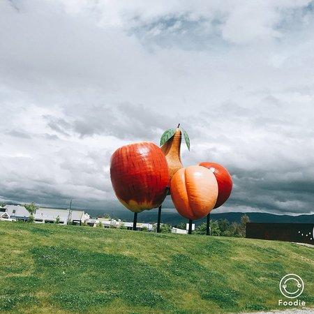 Кромвель, Новая Зеландия: 巨大的水果