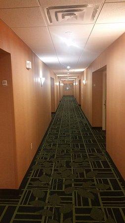 Fairfield Inn & Suites Denton: Hallway is nice