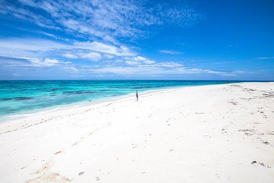 Νησί Ντενί Φωτογραφία