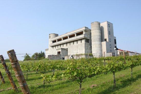 Ikeda-cho, Nhật Bản: ワイン城の外観。十勝ワインを醸造する施設。