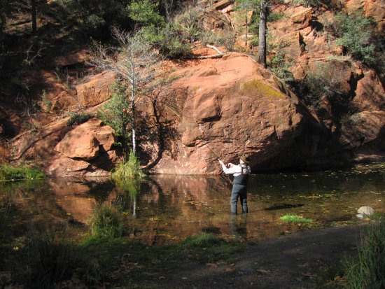 Fly fishing in oak creek canyon nearby b b picture of for Sedona fly fishing