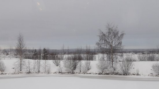 The park outside the Arktikum.