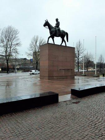 hienotunteinen katukoukku ratsastaa sisään Helsinki