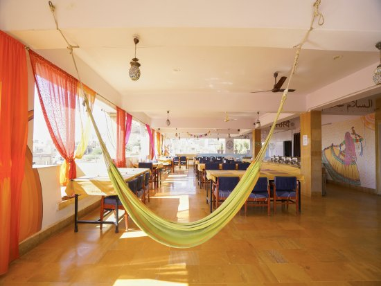 Hocus Pocus  Mystic Panorama Restaurant: relaxing hammock
