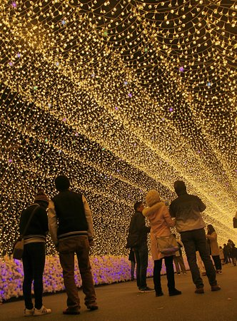 Kuwana, Japan: mesmerizing light illumination