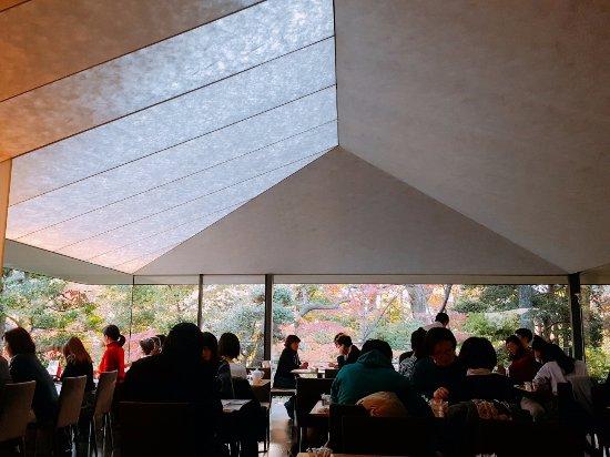 Nezu Museum: 네즈카페