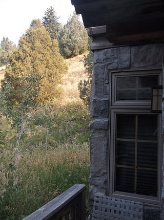 Alpine, WY: Our cottage C2 / very expensive