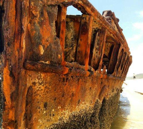 Hervey Bay, Australia: IMG_20171201_153027_749_large.jpg