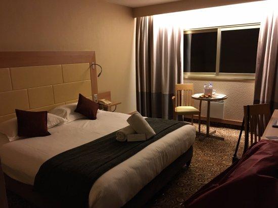 Hotel Lyon Metropole Avis