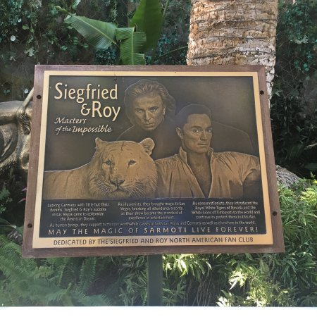 Siegfried Roy 39 S Secret Garden And Dolphin Habitat Las Vegas All You Need To Know Before