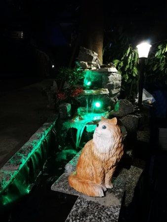 Cogorno, Ιταλία: La cascatella che vi attende all'ingresso del B&B