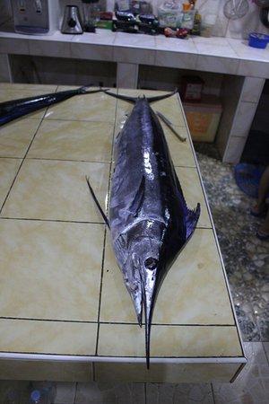 San Isidro, Filipinas: marlin
