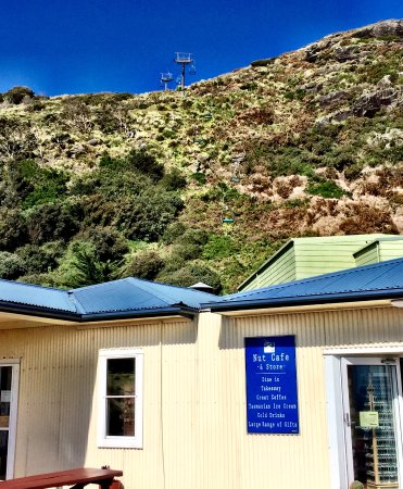 Stanley, Australia: The Nut Cafe and Chairlift Entrance