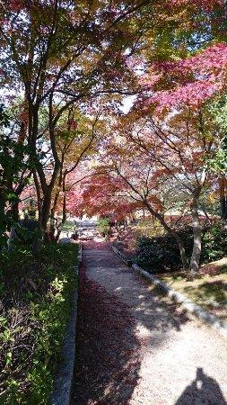 Tsuchiura, Ιαπωνία: 17-11-25-13-42-44-364_photo_large.jpg