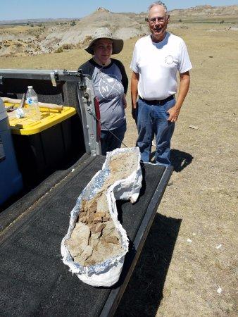 Murfreesboro, TN: Dinosaur bone in Montana