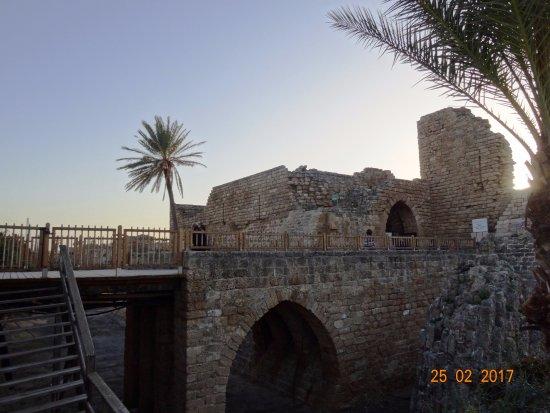 Caesarea National Park, февраль 2017 года...