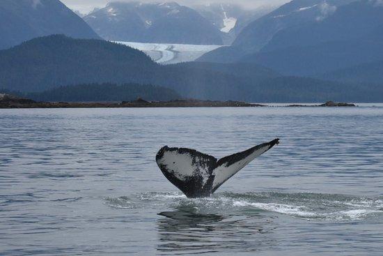 Juneau, AK: getlstd_property_photo