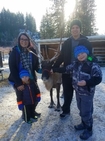 Leavenworth Reindeer Farm: 20171204_110256(0)_large.jpg