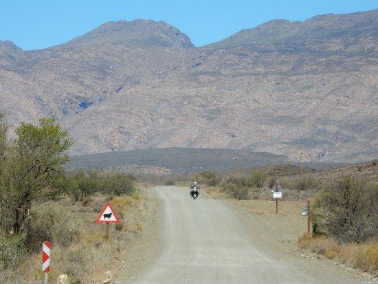 Due South Motorcycle - Day Tours: Schotterstraße durch die Karoo - eine ganz besondere Erfahrung