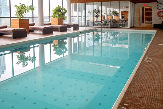 Indoor Pool Kuva The Sutton Place Hotel Edmonton Edmonton Tripadvisor