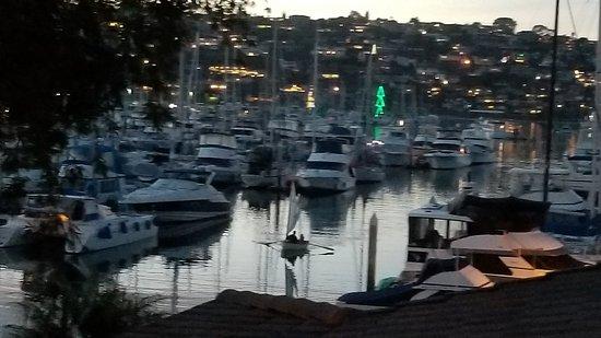 Best Western Plus Island Palms Hotel & Marina: 20171203_170818_large.jpg