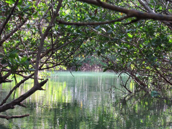 Fort Pierce, FL: Beautiful scenry