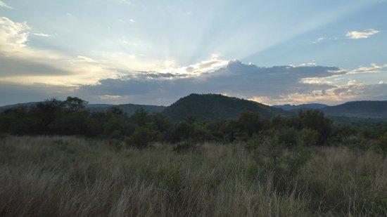Pilanesberg Safaris and Tours: Pilanesberg sunrise