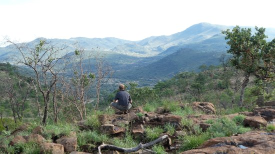Pilanesberg Safaris and Tours: Ryan in his element