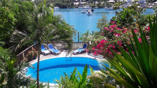 Mango Beach Inn: View from Green Fig room of the pool and harbour