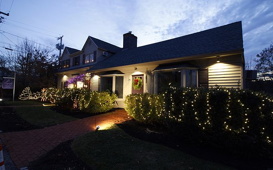 Dragonfly Guest House: Drangonfly at Christmas