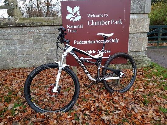 Clumber Park, UK: 20171128_152850_large.jpg