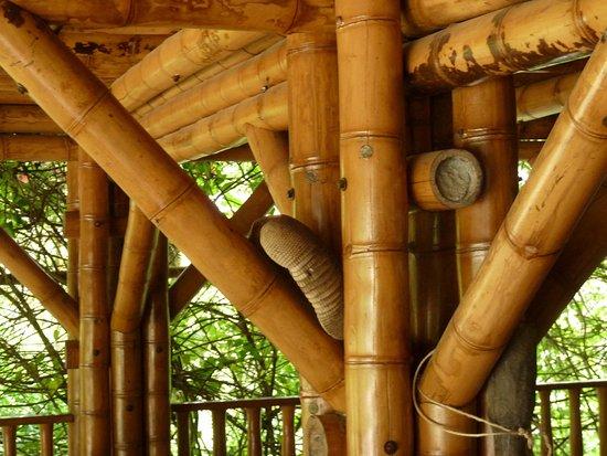 Brucke Zum Bambus Wald 3 Picture Of La Portada Hospedaje San