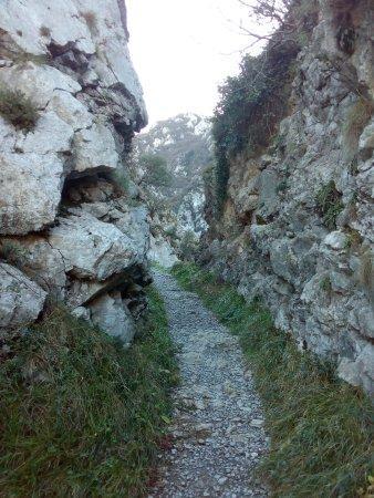 Villanueva De Santo Adriano, Espagne : Ruta de las Xanas