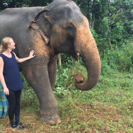 Kegalle, Sri Lanka: photo3.jpg