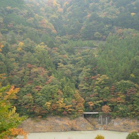 Prefektur Shizuoka, Jepang: photo4.jpg