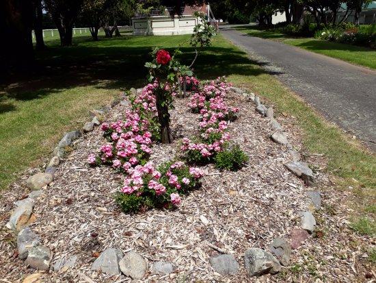 Dannevirke, نيوزيلندا: Garden