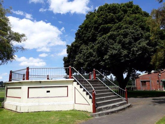 Dannevirke, نيوزيلندا: Tree