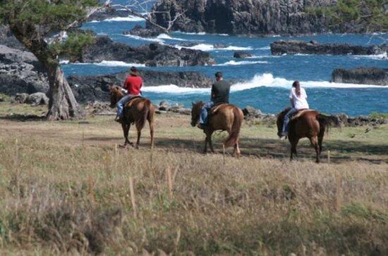 Tour a cavallo di Maui