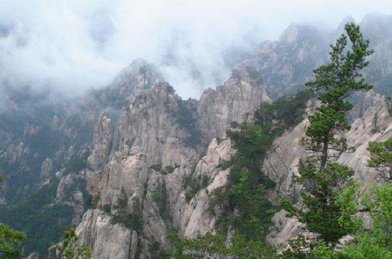 Viagem de um dia pela montanha de...