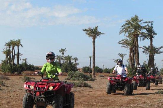 Marrakech Palmeraie Half-Day Quad...
