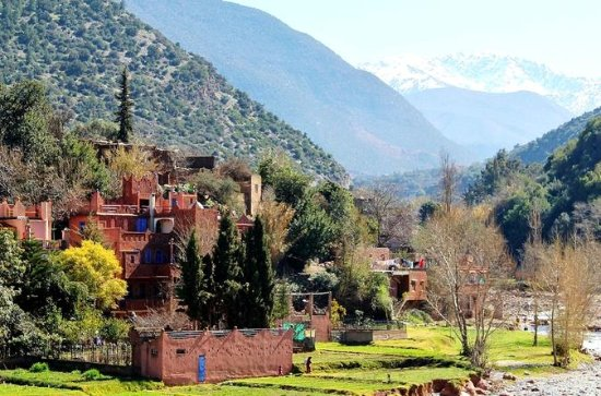 4-Hour High Atlas Mountains and...