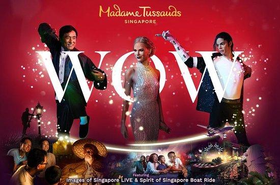 Madame Tussauds Singapur Vollständige...