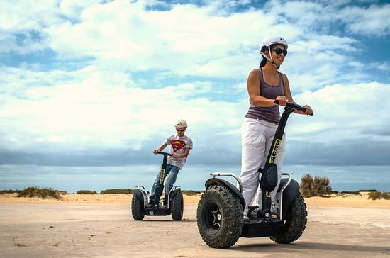 50-Minute or 90-Minute Segway Tour in...