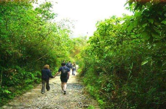 Parque Nacional de Cat Ba Trekking...
