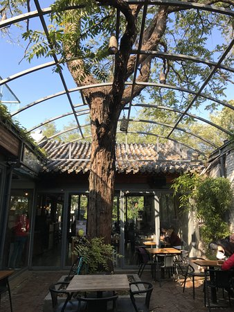 Cafe Zarah: The green with the blue sky, when you can hear the sound from The Drum Tower.