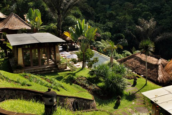 Bagus Jati Health & Wellbeing Retreat: Garden View