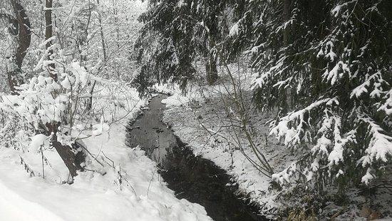 Demänovská Dolina, Slovensko: IMG_20171203_133207_large.jpg