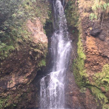 Trou d'eau Douce: photo2.jpg