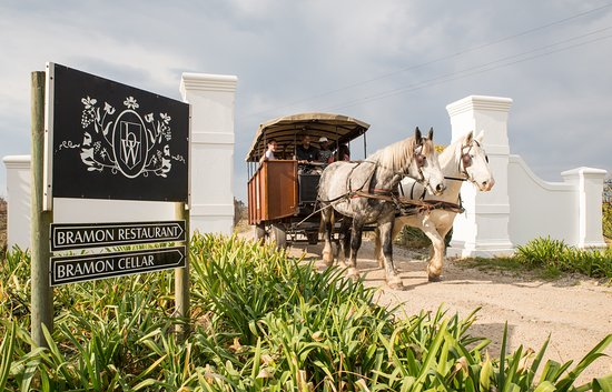Hog Hollow Horse Drawn Carriage Trails